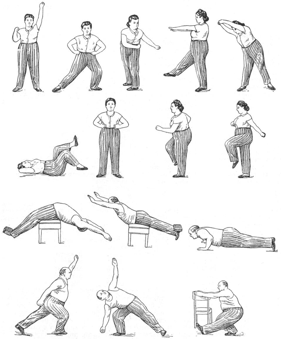 Примерный комплекс  гимнастических  упражнений для тучных женщин; внизу — для тучных мужчин.